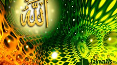 Ошибки в переводе качества «Голень Аллаха»