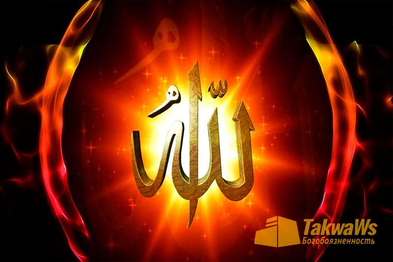 Ошибки, связанные с качеством «Руки Аллаха»