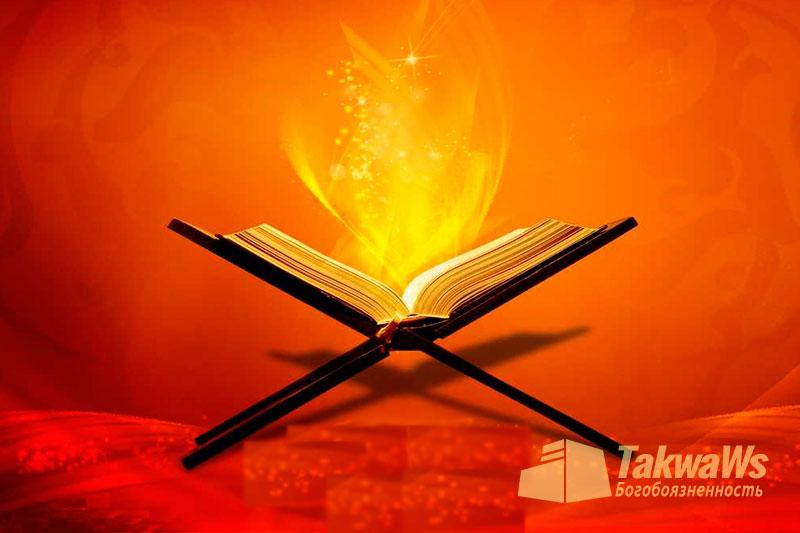 Тафсир аята «Верните их ко мне!» А затем он стал рубить им голени и шеи