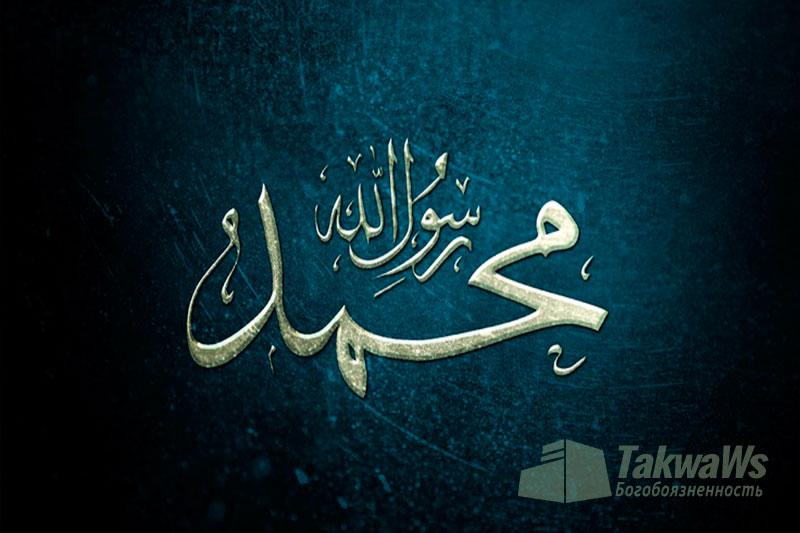 Шейх Са'ад Аш-Шисри: Законоположение мавлида