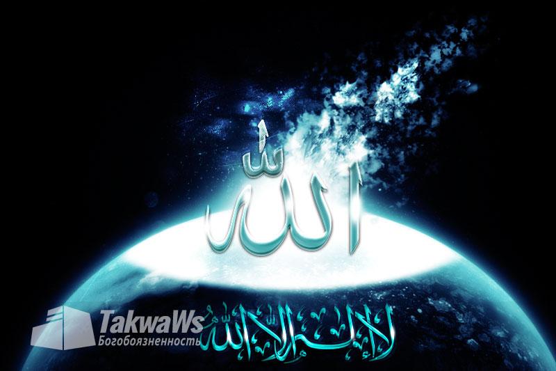 Нет пути к познанию поклонения, кроме как посредством призыва к Аллаху Всевышнему