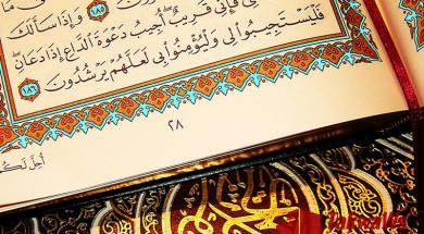 tafcir-ayat-al-kursij-tron-255-j-ayat-sury-al-bakara-korova-ibn-kasir