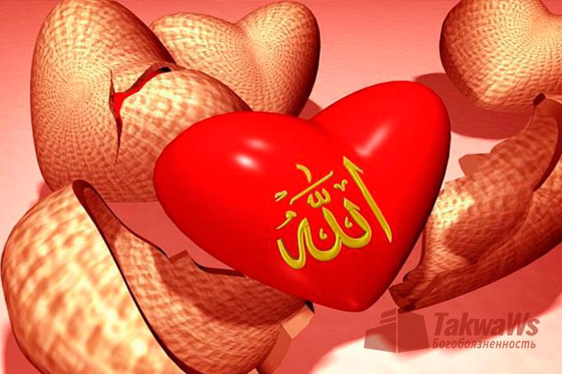 Пути познания Аллаха