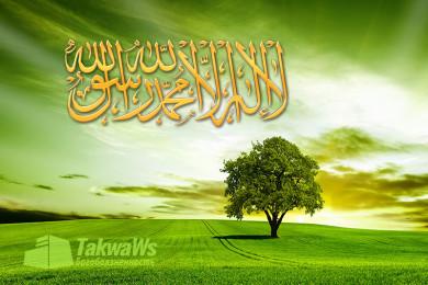 Условия свидетельства «ля иляха илля-Ллах», на которые указывают Коран и Сунна