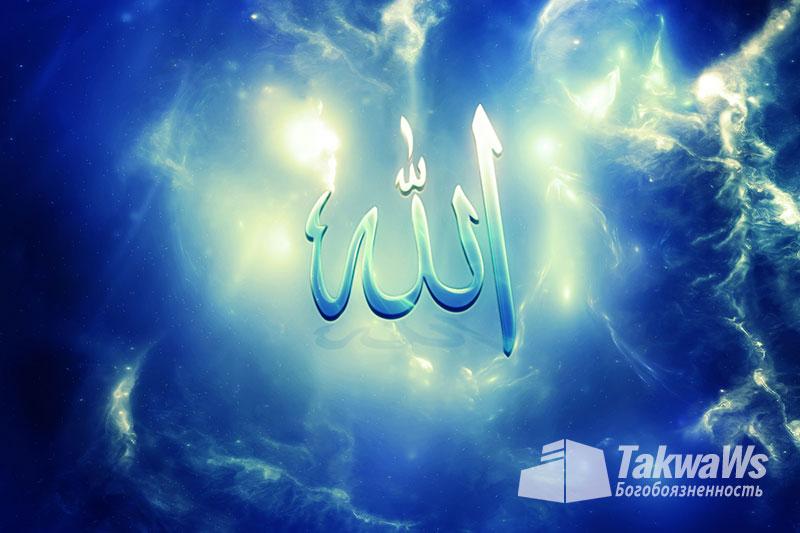 Имена и Качества Аллаха: Возвышение Аллаха над Его творениями