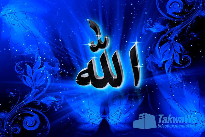 О словах Всевышнего (смысловой перевод): «Аллах Наилучший из хитрецов»