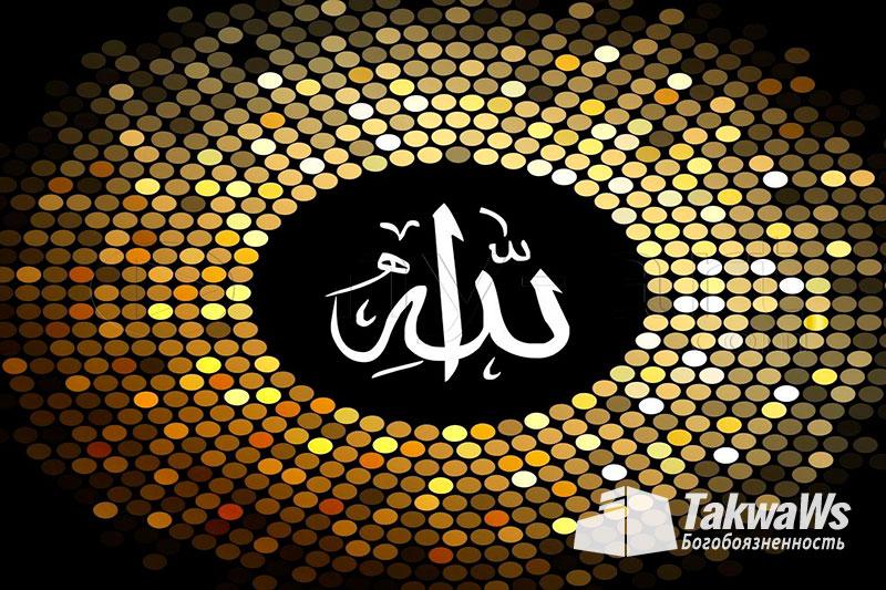 Имена и Качества Аллаха: Установление хитрости и ухищрения Всевышнему Аллаху