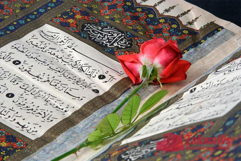 Разрешено ли читать Коран во время месячных?