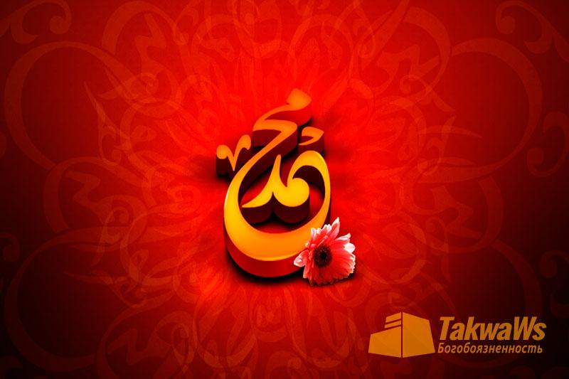 Место женщины в жизни Пророка (мир ему и благословение Аллаха)