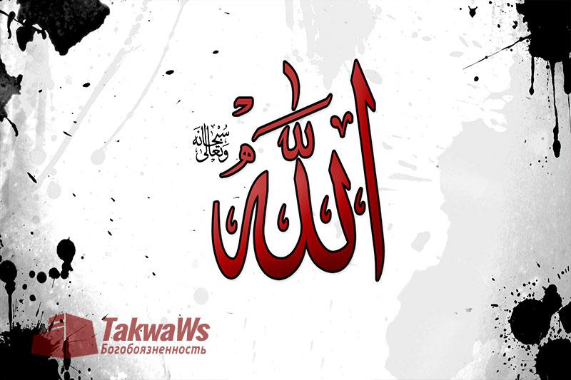 Имена и Качества Аллаха: Лик Всевышнего Аллаха