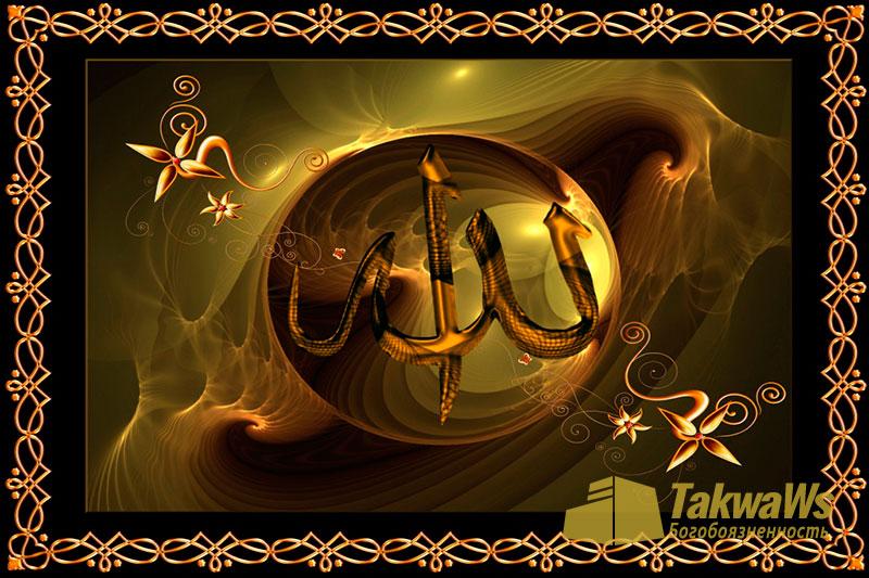 Имена и Качества Аллаха: О довольствие Аллаха, Его гнева и ненависти