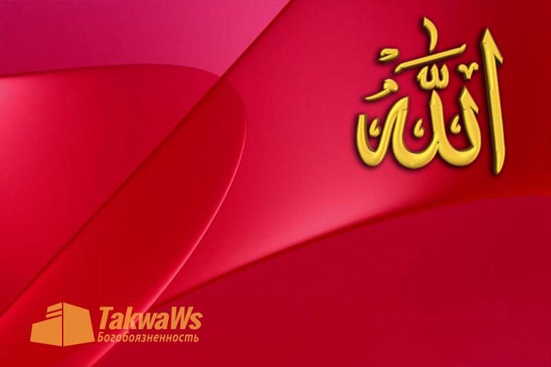 Имена и Качества Аллаха: Речь Всевышнего Аллаха