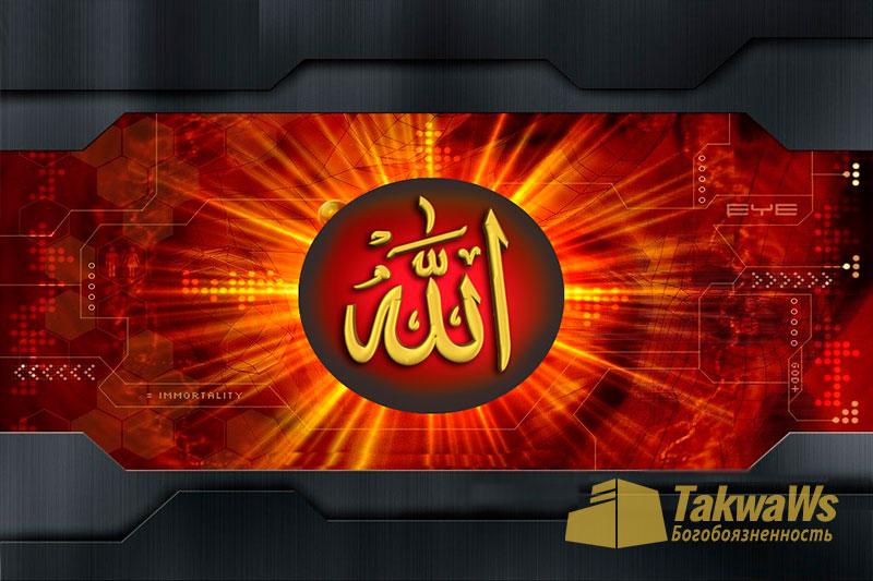 Имена и Качества Аллаха: Удивления и смех Аллаха