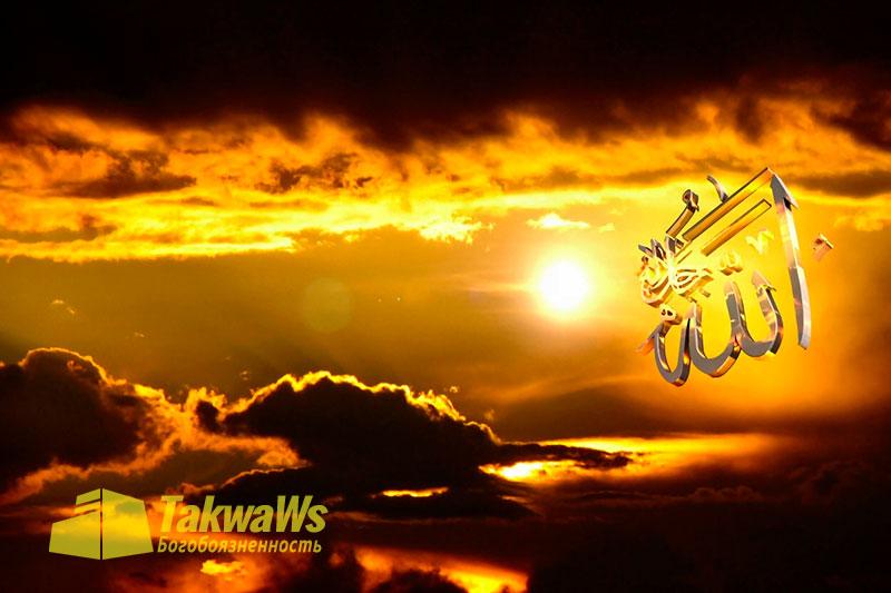 Имена и Качества Аллаха: Воля и Желания Всевышнего Аллаха
