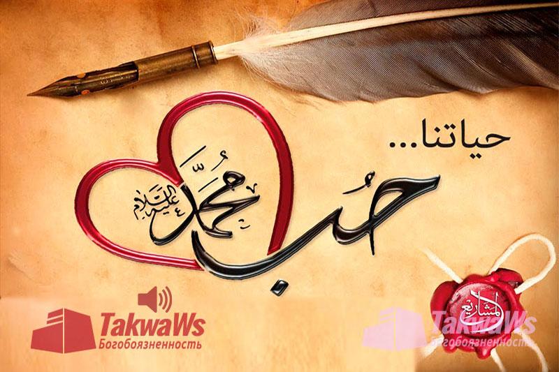 Сира-Жизнеописание пророка Мухаммада (да благословит его Аллах и приветствует)