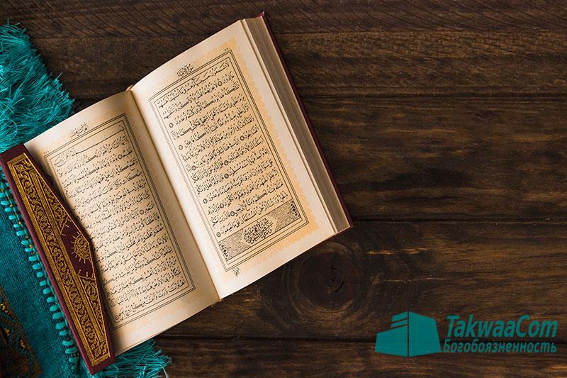 Описание лицемеров — Шейх Усеймин
