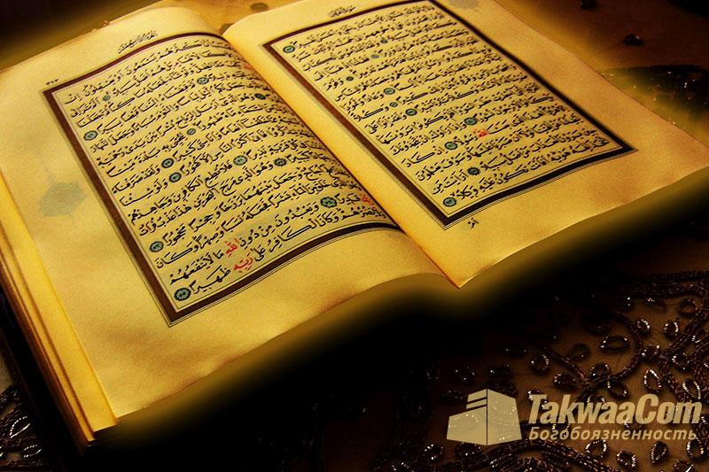 Разъяснение аятов из суры «Аль-Хашр» — Шейх Усеймин
